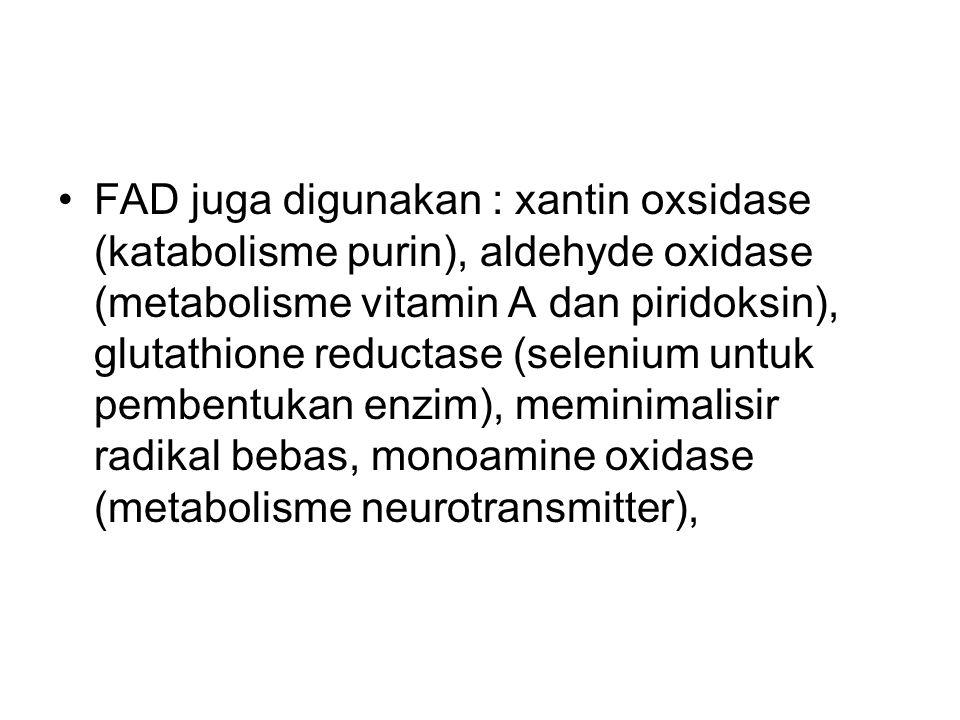 FAD juga digunakan : xantin oxsidase (katabolisme purin), aldehyde oxidase (metabolisme vitamin A dan piridoksin), glutathione reductase (selenium unt
