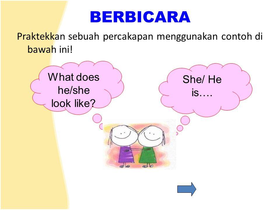 BERBICARA Praktekkan sebuah percakapan menggunakan contoh di bawah ini! What does he/she look like? She/ He is….