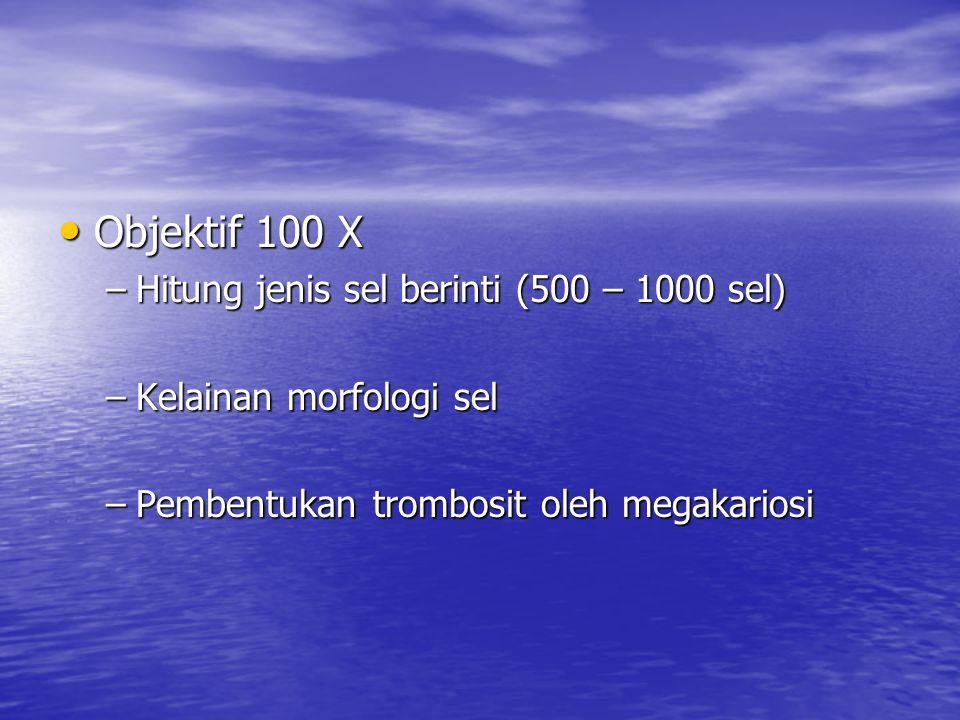 Objektif 100 X Objektif 100 X –Hitung jenis sel berinti (500 – 1000 sel) –Kelainan morfologi sel –Pembentukan trombosit oleh megakariosi