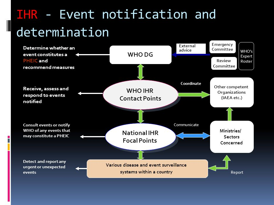 IHR National Focal Points Co-ordination and assessment National capacity assessment, planning and reporting Linking to national emergency response systems Risk assessment International responses