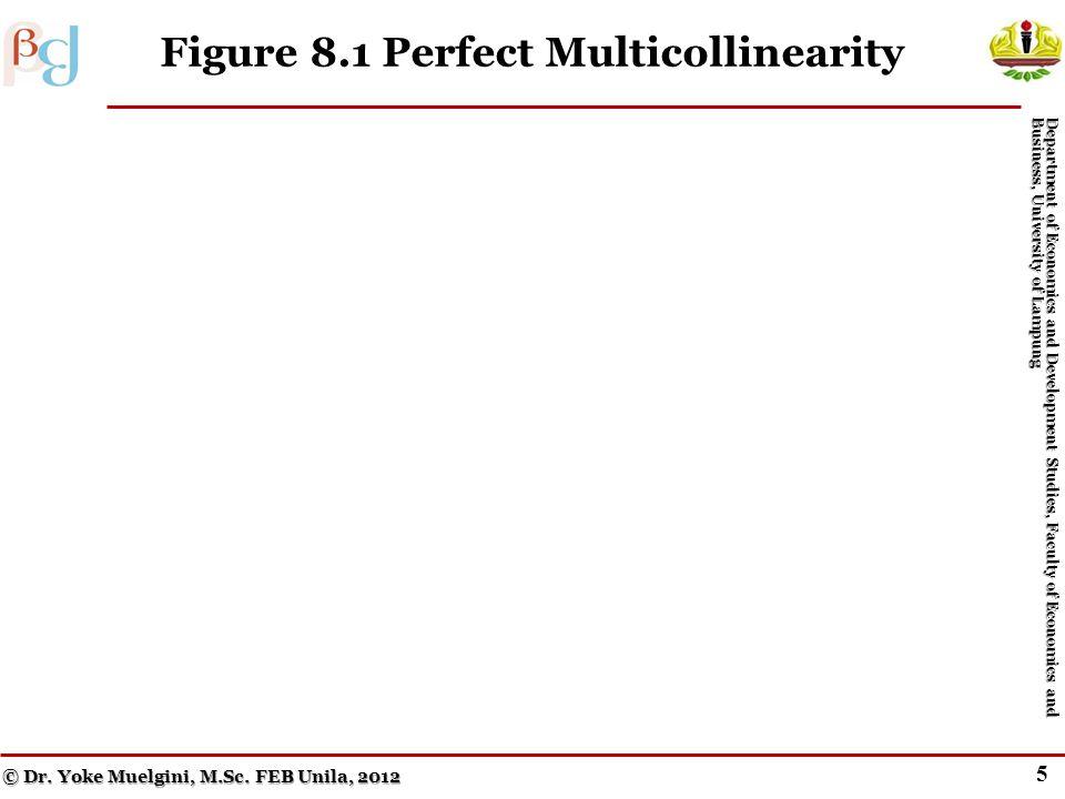 5 Figure 8.1 Perfect Multicollinearity © Dr.Yoke Muelgini, M.Sc.