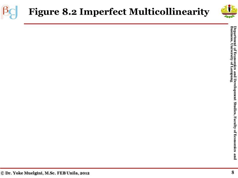 8 Figure 8.2 Imperfect Multicollinearity © Dr.Yoke Muelgini, M.Sc.