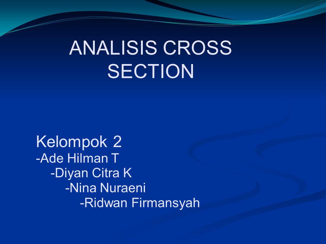 Kelompok 2 -Ade Hilman T -Diyan Citra K -Nina Nuraeni -Ridwan Firmansyah ANALISIS CROSS SECTION