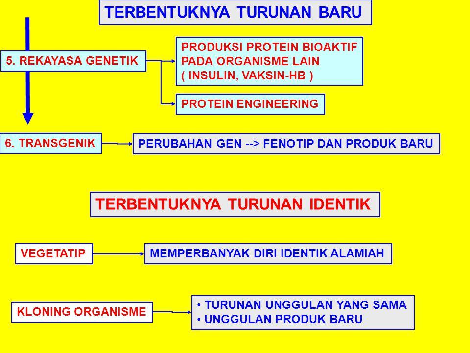 TERBENTUKNYA TURUNAN BARU 5. REKAYASA GENETIK TERBENTUKNYA TURUNAN IDENTIK VEGETATIP KLONING ORGANISME 6. TRANSGENIK PRODUKSI PROTEIN BIOAKTIF PADA OR