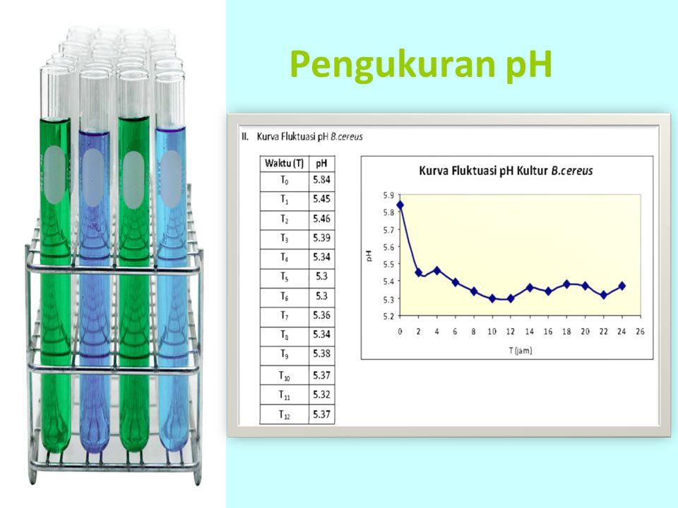 Pengukuran pH