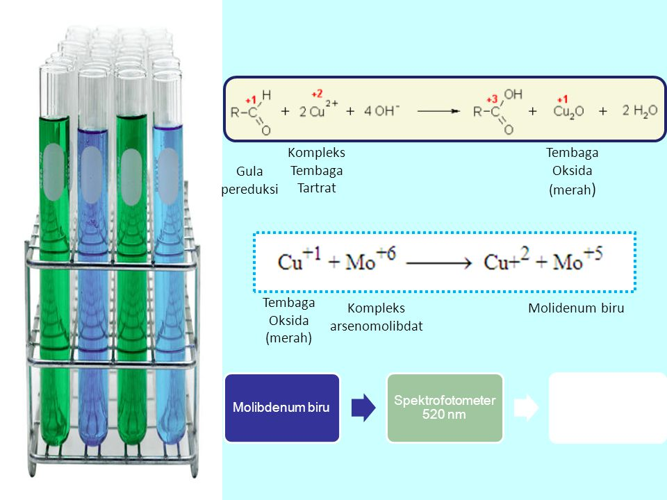 Gula pereduksi Kompleks Tembaga Tartrat Tembaga Oksida (merah ) Kompleks arsenomolibdat Molidenum biru Molibdenum biru Spektrofotometer 520 nm Kadar g