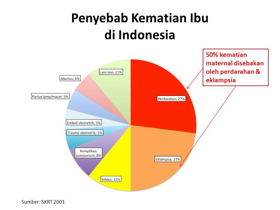 Penyebab Kematian Ibu di Indonesia Sumber: SKRT 2001 50% kematian maternal disebakan oleh perdarahan & eklampsia