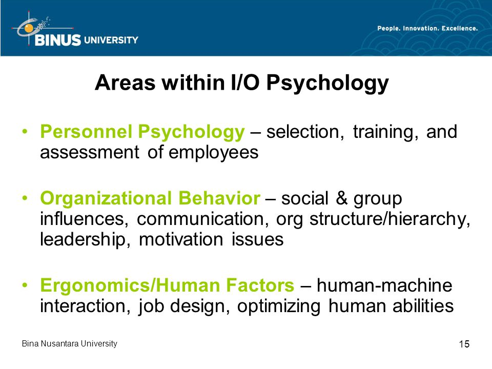 Areas within I/O Psychology Personnel Psychology – selection, training, and assessment of employees Organizational Behavior – social & group influences, communication, org structure/hierarchy, leadership, motivation issues Ergonomics/Human Factors – human-machine interaction, job design, optimizing human abilities Bina Nusantara University 15