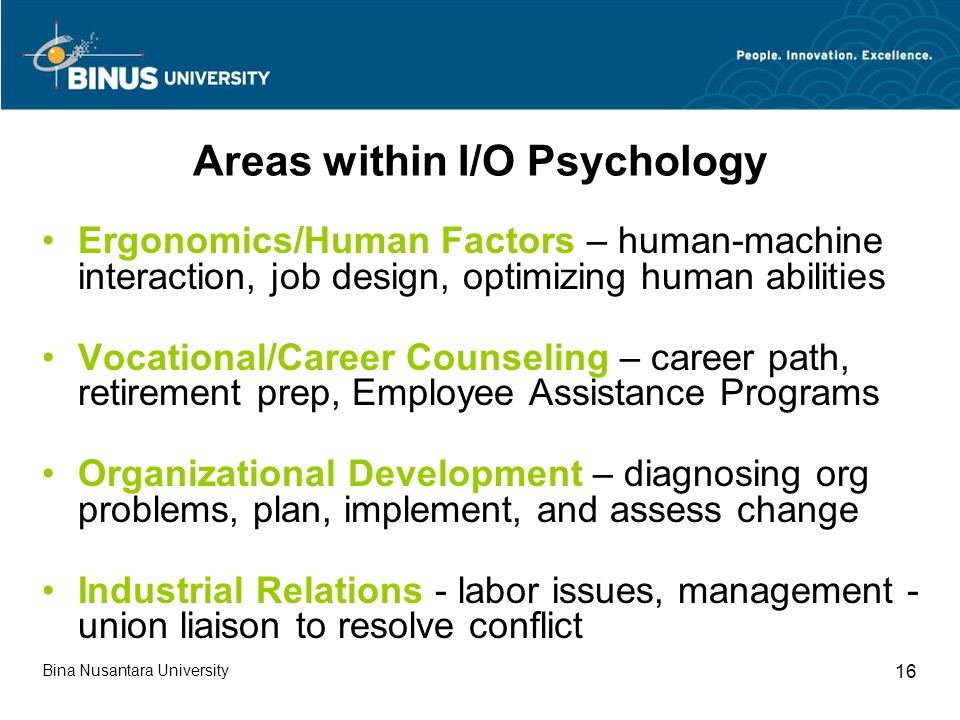 Areas within I/O Psychology Ergonomics/Human Factors – human-machine interaction, job design, optimizing human abilities Vocational/Career Counseling – career path, retirement prep, Employee Assistance Programs Organizational Development – diagnosing org problems, plan, implement, and assess change Industrial Relations - labor issues, management - union liaison to resolve conflict Bina Nusantara University 16