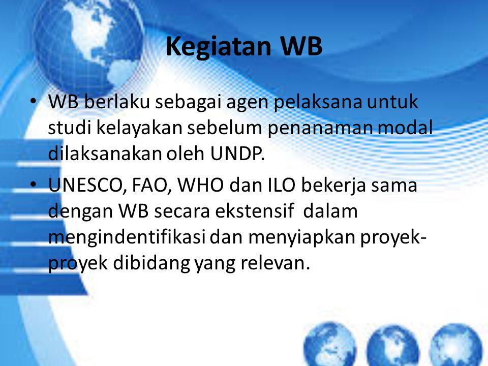 Kegiatan WB WB berlaku sebagai agen pelaksana untuk studi kelayakan sebelum penanaman modal dilaksanakan oleh UNDP. UNESCO, FAO, WHO dan ILO bekerja s
