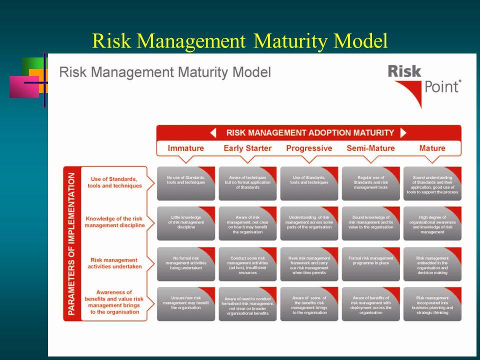 13 - 28 Risk Management Maturity Model