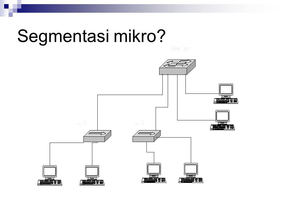 Segmentasi mikro?
