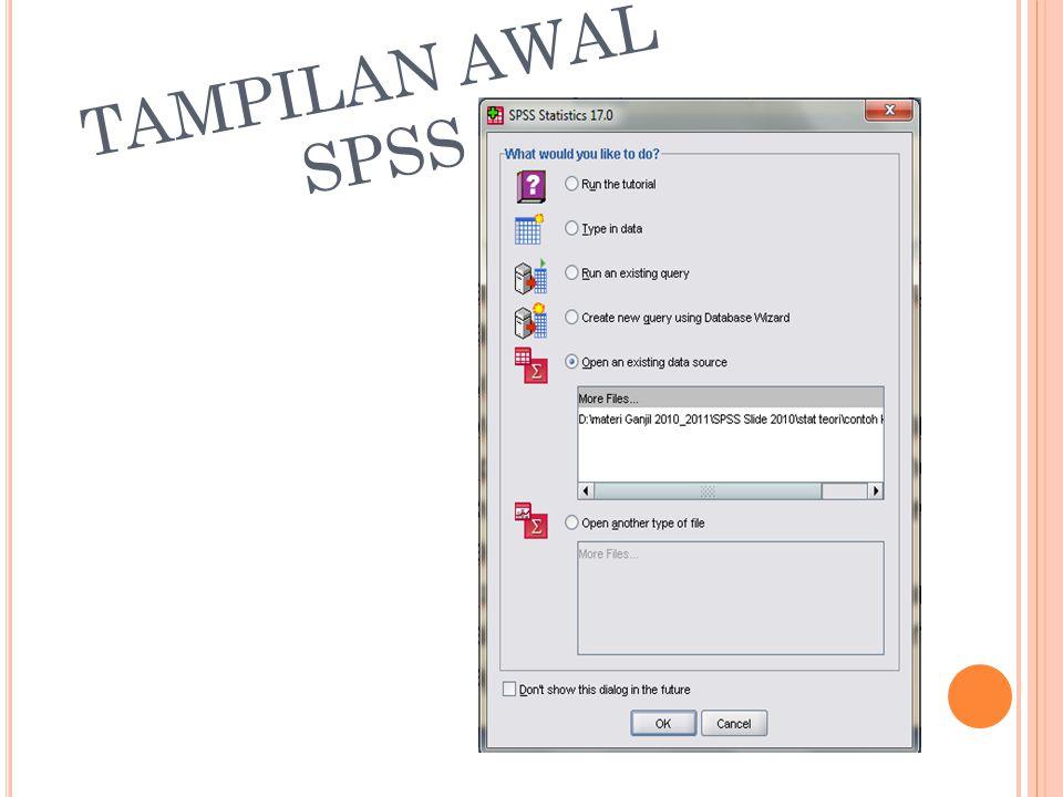 T AMPILAN J ENDELA SPSS Data View Variabel View Data Editor