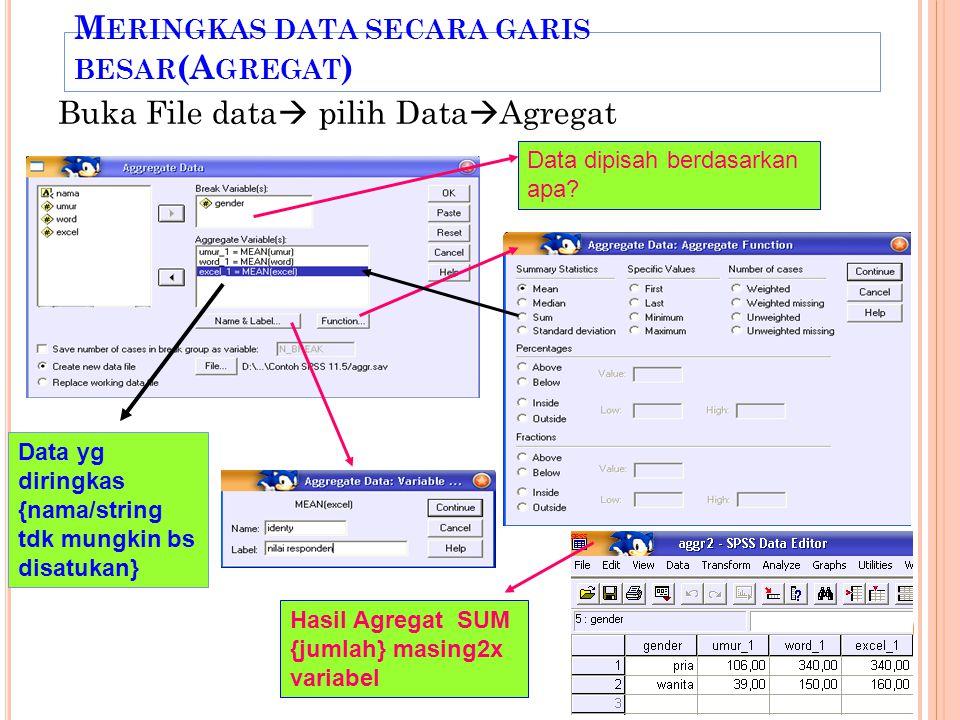 M ERINGKAS DATA SECARA GARIS BESAR (A GREGAT ) Buka File data  pilih Data  Agregat Data dipisah berdasarkan apa.