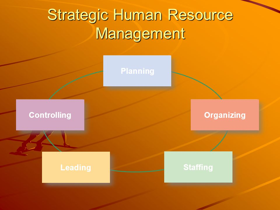 Planning Organizing Leading Staffing Controlling