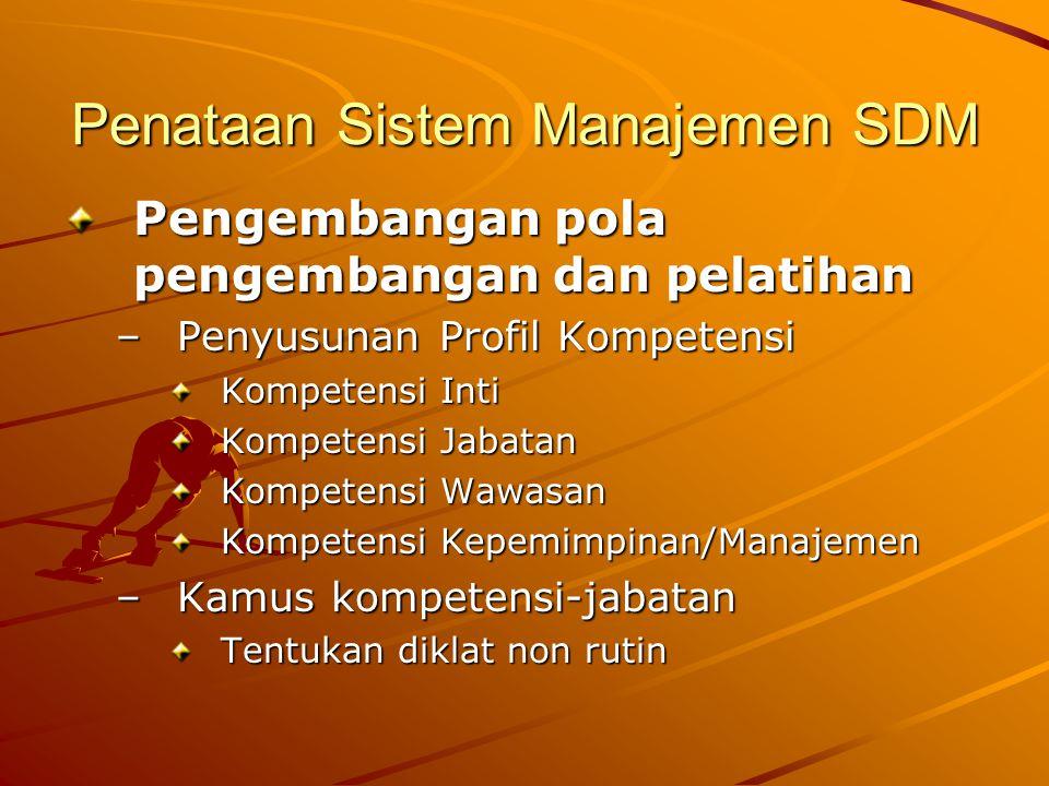 Penataan Sistem Manajemen SDM Pengembangan pola pengembangan dan pelatihan –Penyusunan Profil Kompetensi Kompetensi Inti Kompetensi Jabatan Kompetensi