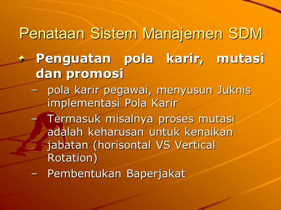 Penataan Sistem Manajemen SDM Penguatan pola karir, mutasi dan promosi –pola karir pegawai, menyusun Juknis implementasi Pola Karir –Termasuk misalnya