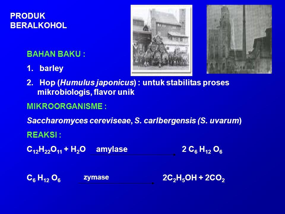 BAHAN BAKU : 1. barley 2. Hop (Humulus japonicus) : untuk stabilitas proses mikrobiologis, flavor unik MIKROORGANISME : Saccharomyces cereviseae, S. c