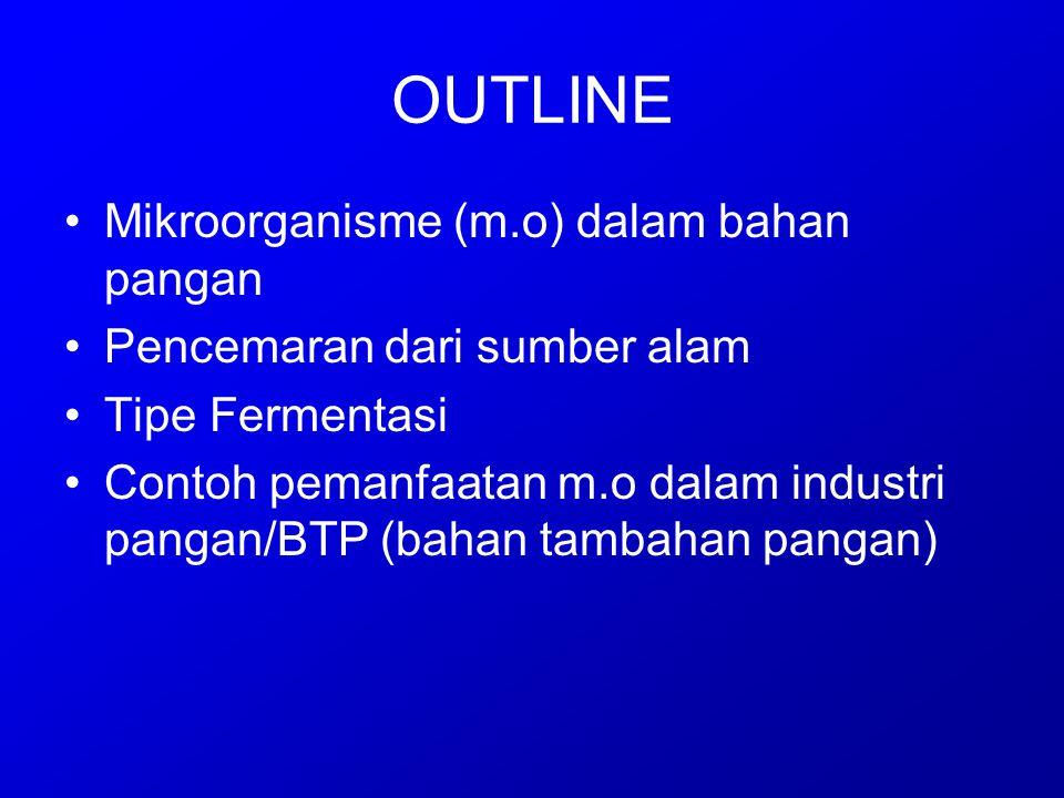 OUTLINE Mikroorganisme (m.o) dalam bahan pangan Pencemaran dari sumber alam Tipe Fermentasi Contoh pemanfaatan m.o dalam industri pangan/BTP (bahan ta