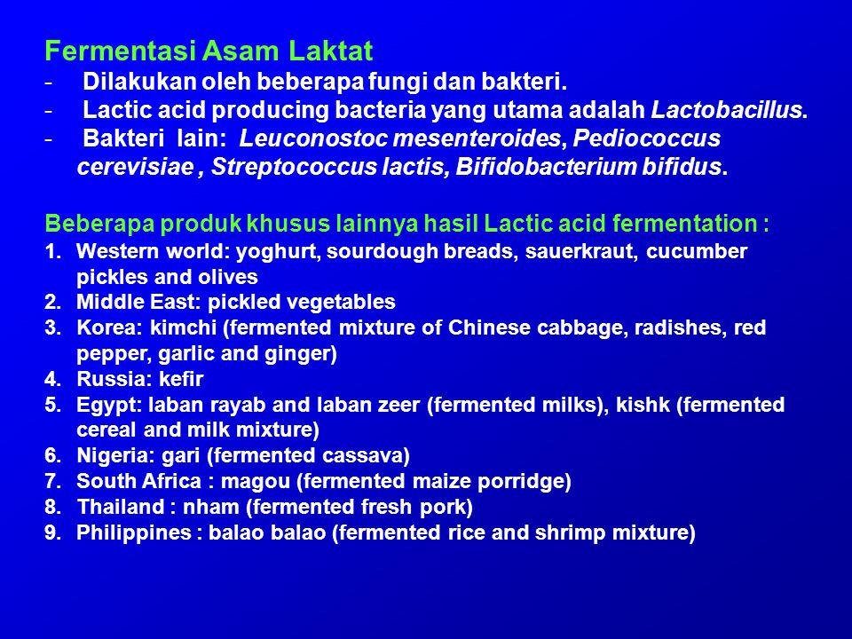 Fermentasi Asam Laktat - Dilakukan oleh beberapa fungi dan bakteri. - Lactic acid producing bacteria yang utama adalah Lactobacillus. - Bakteri lain: