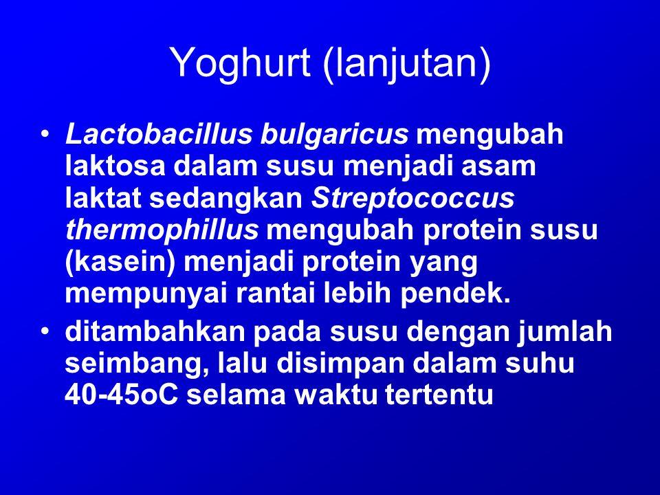 Yoghurt (lanjutan) Lactobacillus bulgaricus mengubah laktosa dalam susu menjadi asam laktat sedangkan Streptococcus thermophillus mengubah protein sus