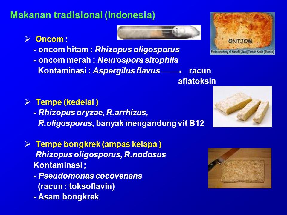 Makanan tradisional (Indonesia)  Oncom : - oncom hitam : Rhizopus oligosporus - oncom merah : Neurospora sitophila Kontaminasi : Aspergilus flavus ra