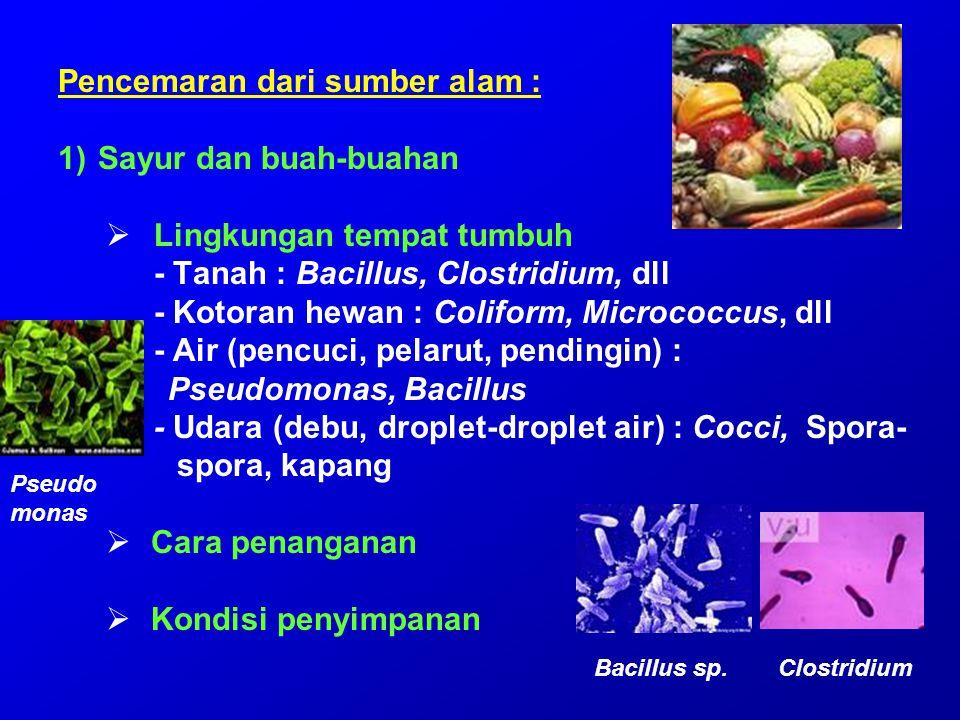 Pencemaran dari sumber alam : 1)Sayur dan buah-buahan  Lingkungan tempat tumbuh - Tanah : Bacillus, Clostridium, dll - Kotoran hewan : Coliform, Micr