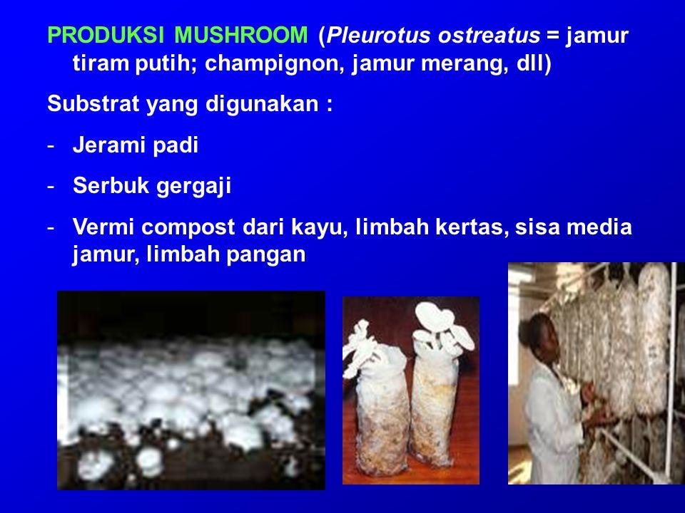 PRODUKSI MUSHROOM (Pleurotus ostreatus = jamur tiram putih; champignon, jamur merang, dll) Substrat yang digunakan : -Jerami padi -Serbuk gergaji -Ver