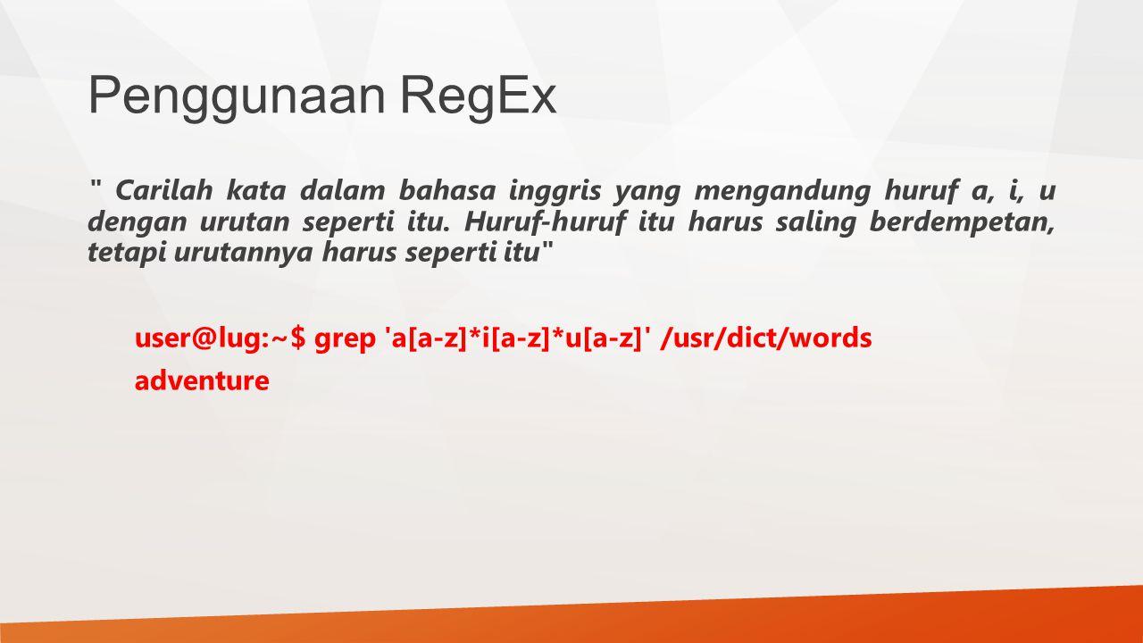 Penggunaan RegEx