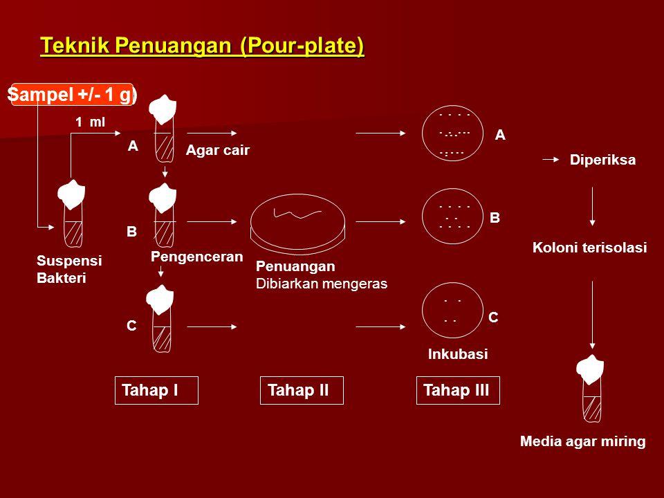 Sampel +/- 1 g) A B C Suspensi Bakteri 1 ml Agar cair Pengenceran Penuangan Dibiarkan mengeras....... …......... Diperiksa Koloni terisolasi Media aga
