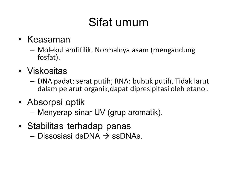 Sifat umum Keasaman – Molekul amfifilik. Normalnya asam (mengandung fosfat). Viskositas – DNA padat: serat putih; RNA: bubuk putih. Tidak larut dalam
