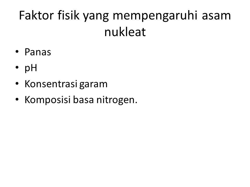 Faktor fisik yang mempengaruhi asam nukleat Panas pH Konsentrasi garam Komposisi basa nitrogen.