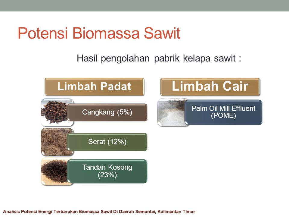 Potensi Biomassa Sawit Hasil pengolahan pabrik kelapa sawit : Limbah Padat Cangkang (5%)Serat (12%) Tandan Kosong (23%) Limbah Cair Palm Oil Mill Effluent (POME) Analisis Potensi Energi Terbarukan Biomassa Sawit Di Daerah Semuntai, Kalimantan Timur
