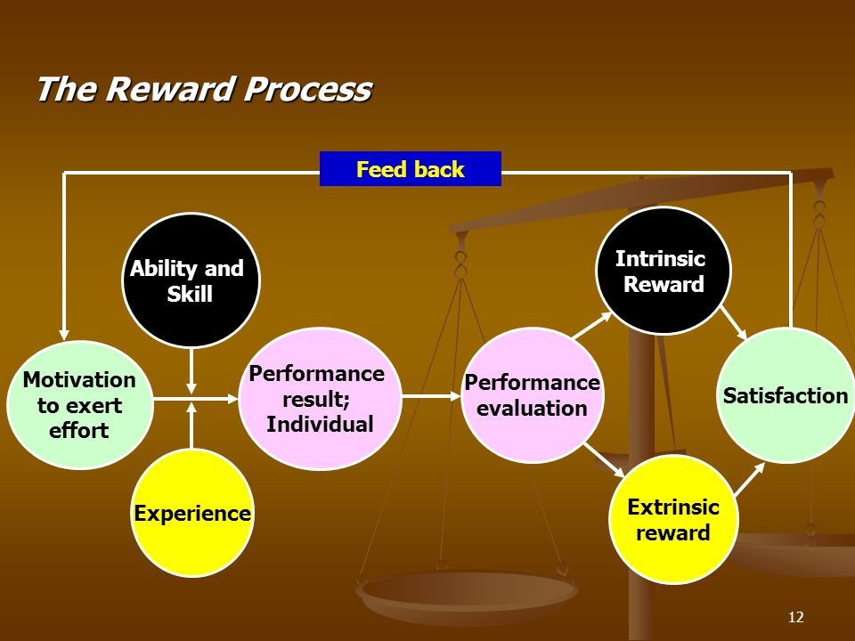 12 The Reward Process Motivation to exert effort Ability and Skill Experience Performance result; Individual Performance evaluation Intrinsic Reward E