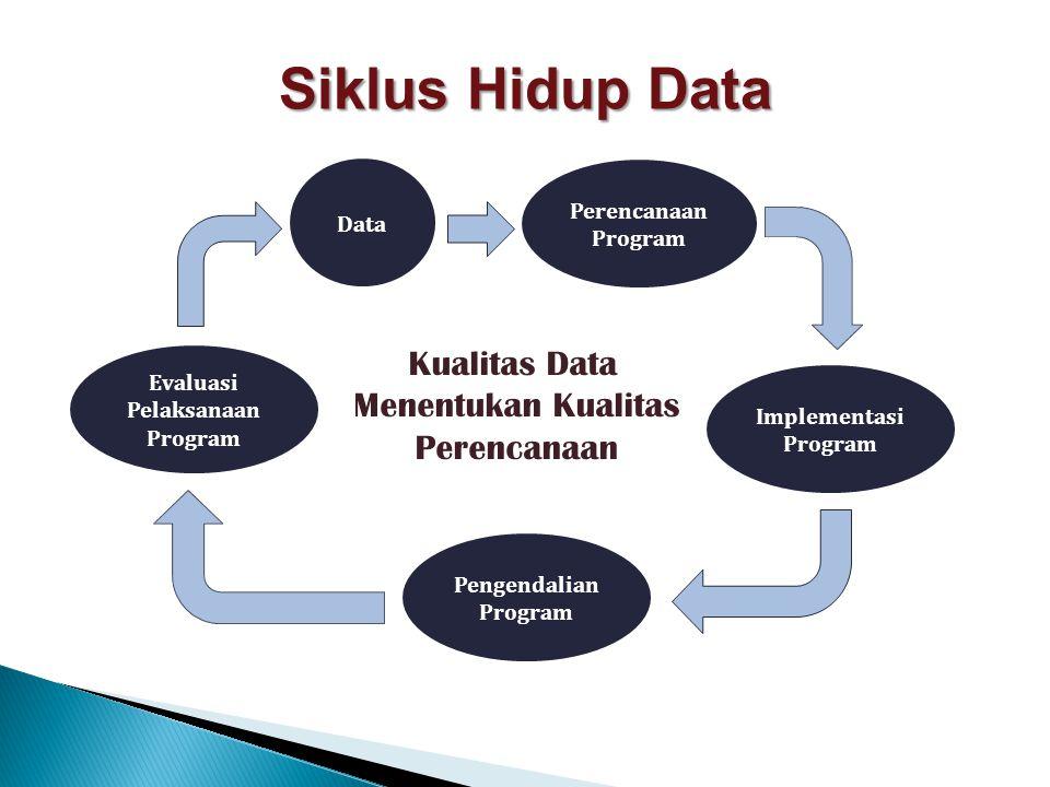 Pengendalian Program Data Implementasi Program Perencanaan Program Evaluasi Pelaksanaan Program Siklus Hidup Data Kualitas Data Menentukan Kualitas Pe