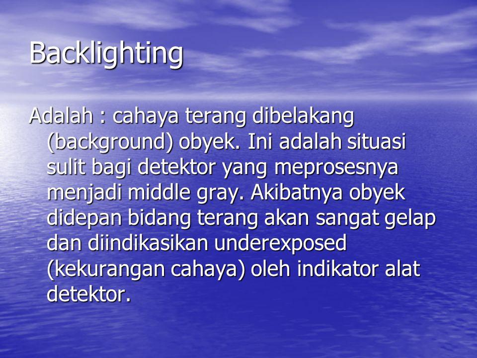 Backlighting Adalah : cahaya terang dibelakang (background) obyek.