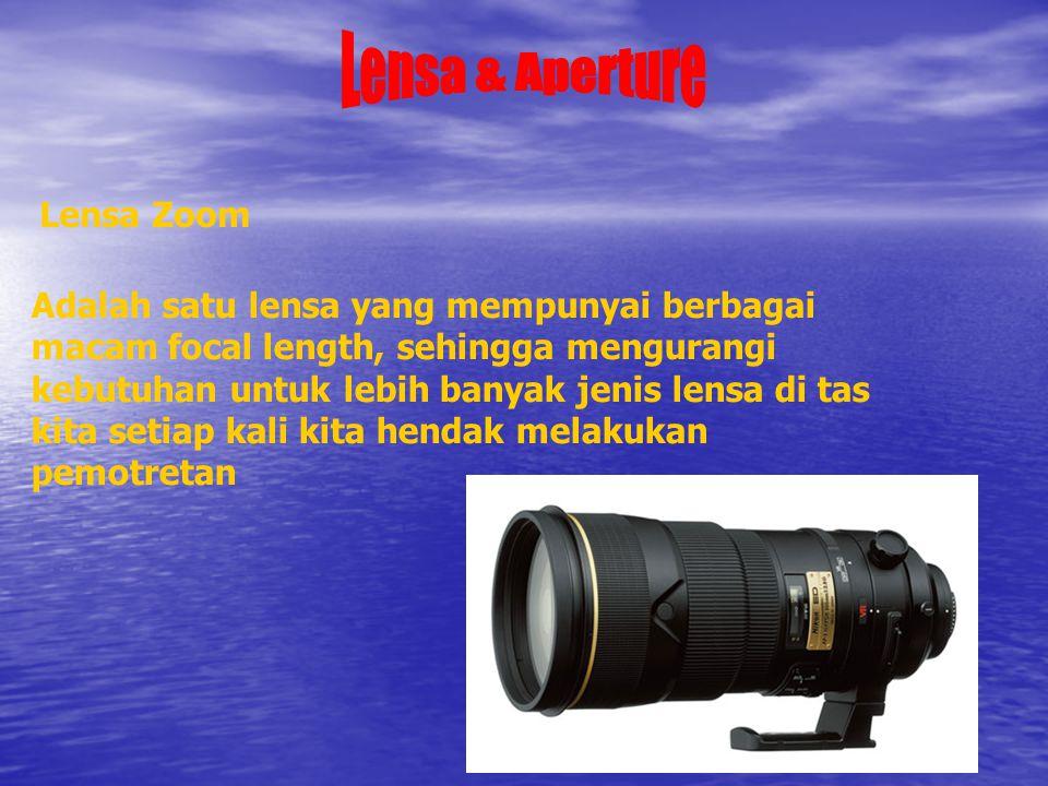 Lensa Zoom Adalah satu lensa yang mempunyai berbagai macam focal length, sehingga mengurangi kebutuhan untuk lebih banyak jenis lensa di tas kita setiap kali kita hendak melakukan pemotretan