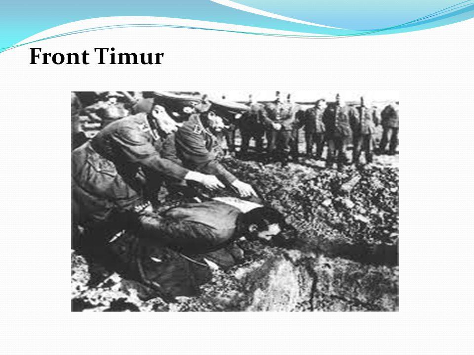 sejumlah besar tentara dibatasi geraknya di parit- parit perlindungan dan hanya bisa bergerak sedikit karena pertahanan yang ketat. Ini terjadi khusus