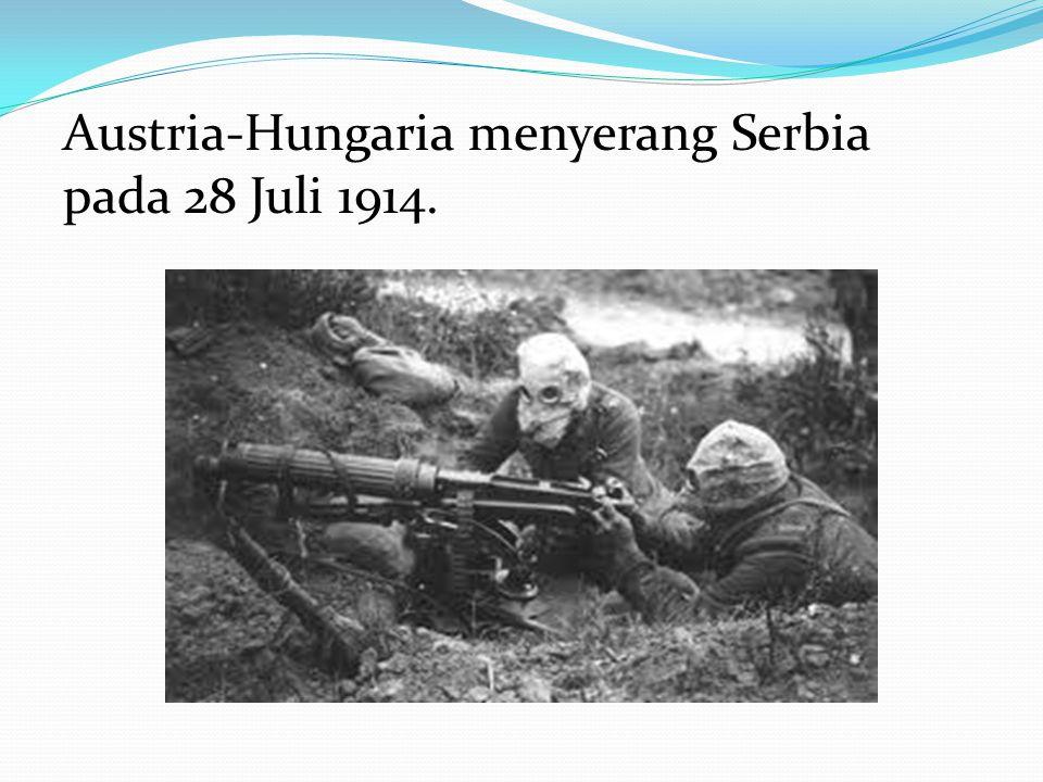 Pembunuhan tersebut berujung pada ultimatum Habsburg terhadap Kerajaan Serbia. Dengan bantuan Jerman, Austria-Hungaria memutuskan perang terhadap Serb