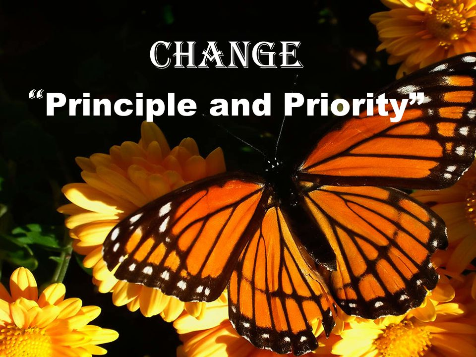 Change Principle and Priority