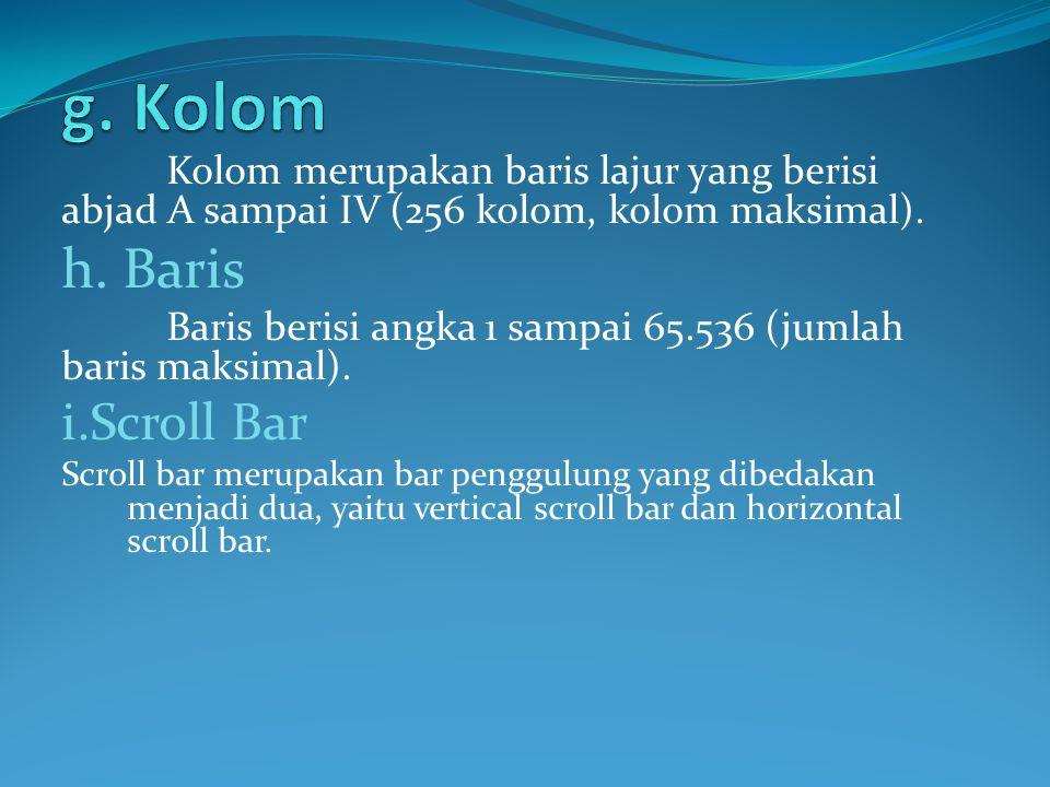 Kolom merupakan baris lajur yang berisi abjad A sampai IV (256 kolom, kolom maksimal). h. Baris Baris berisi angka 1 sampai 65.536 (jumlah baris maksi
