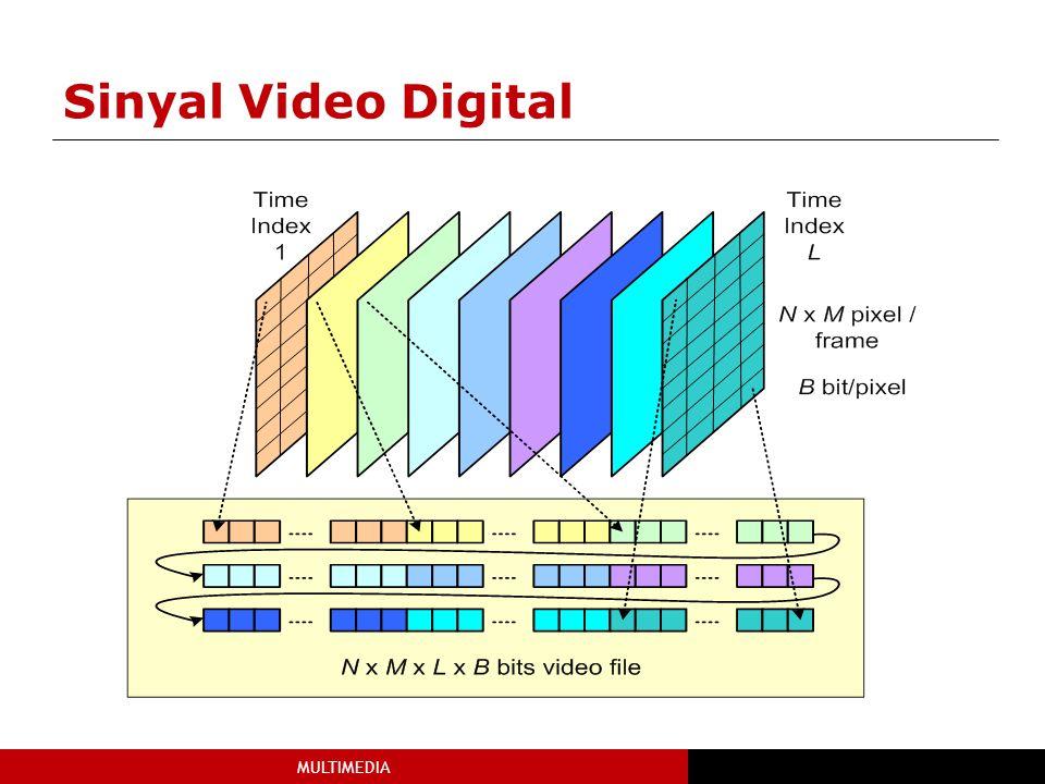 MULTIMEDIA Sinyal Video Digital
