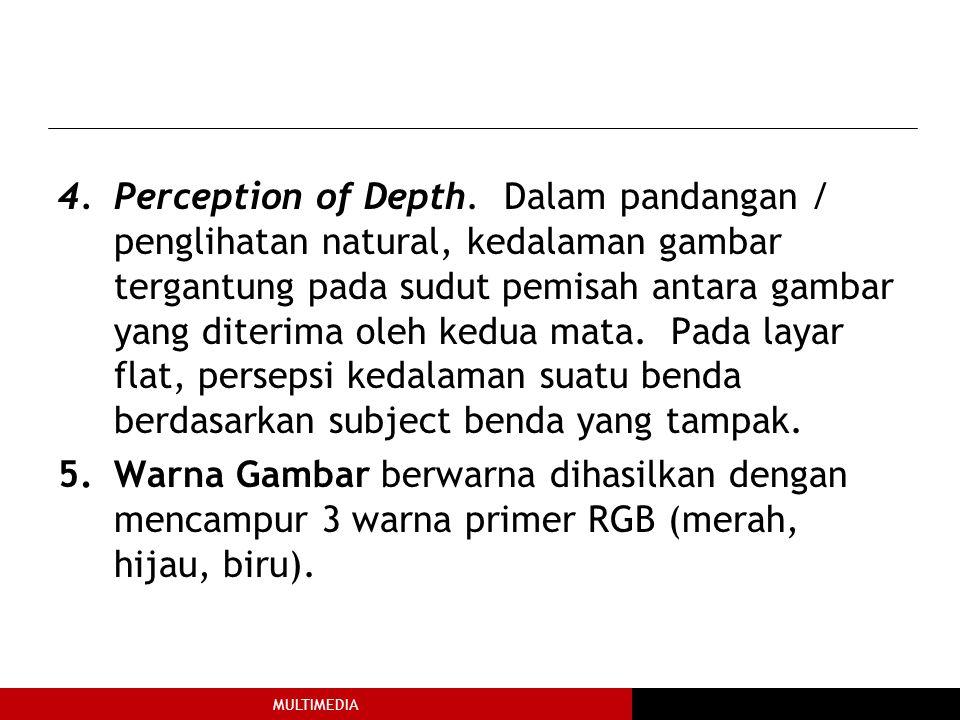 MULTIMEDIA 4.Perception of Depth.