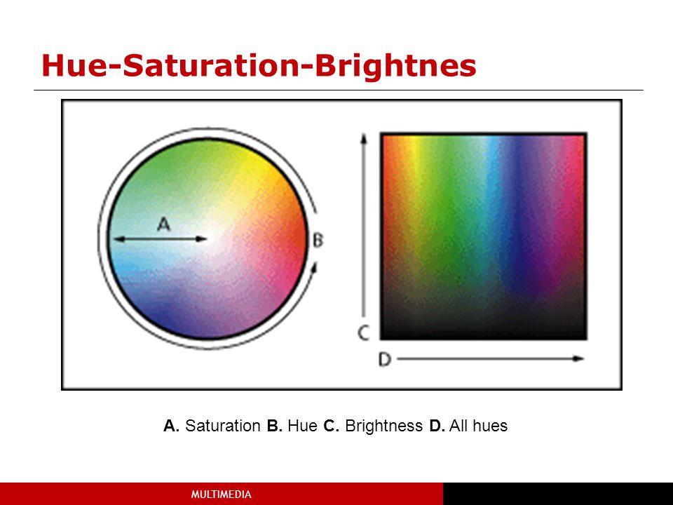 MULTIMEDIA Hue-Saturation-Brightnes A. Saturation B. Hue C. Brightness D. All hues