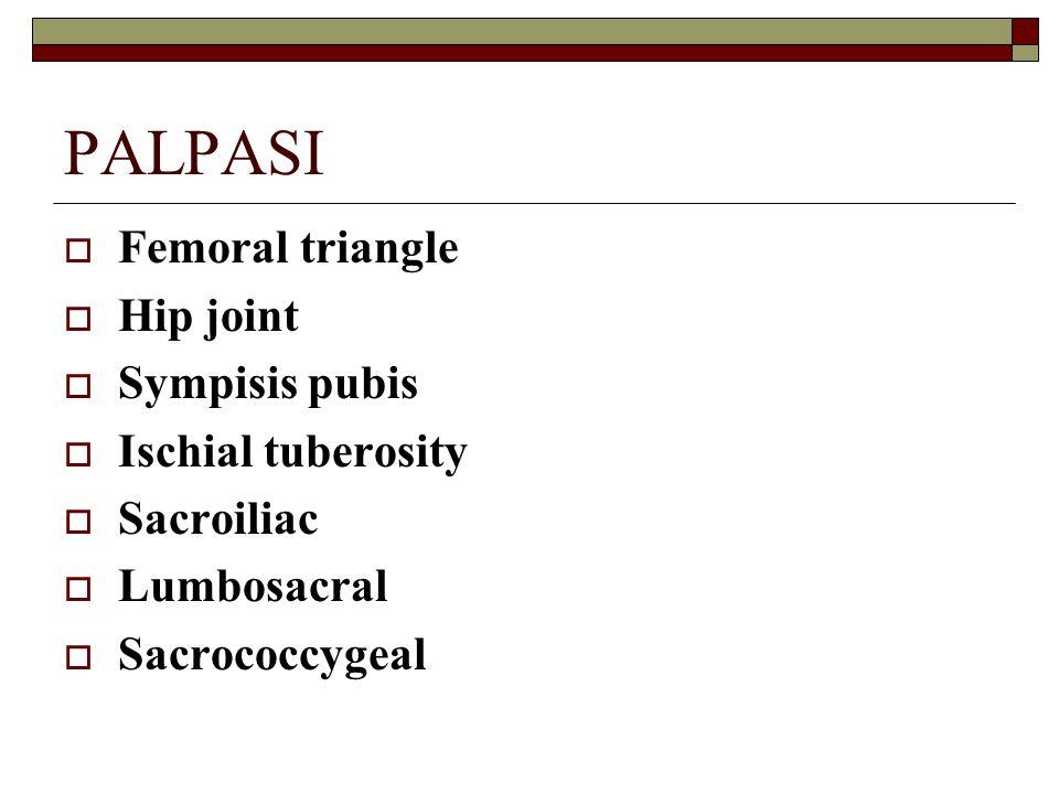 PALPASI  Femoral triangle  Hip joint  Sympisis pubis  Ischial tuberosity  Sacroiliac  Lumbosacral  Sacrococcygeal