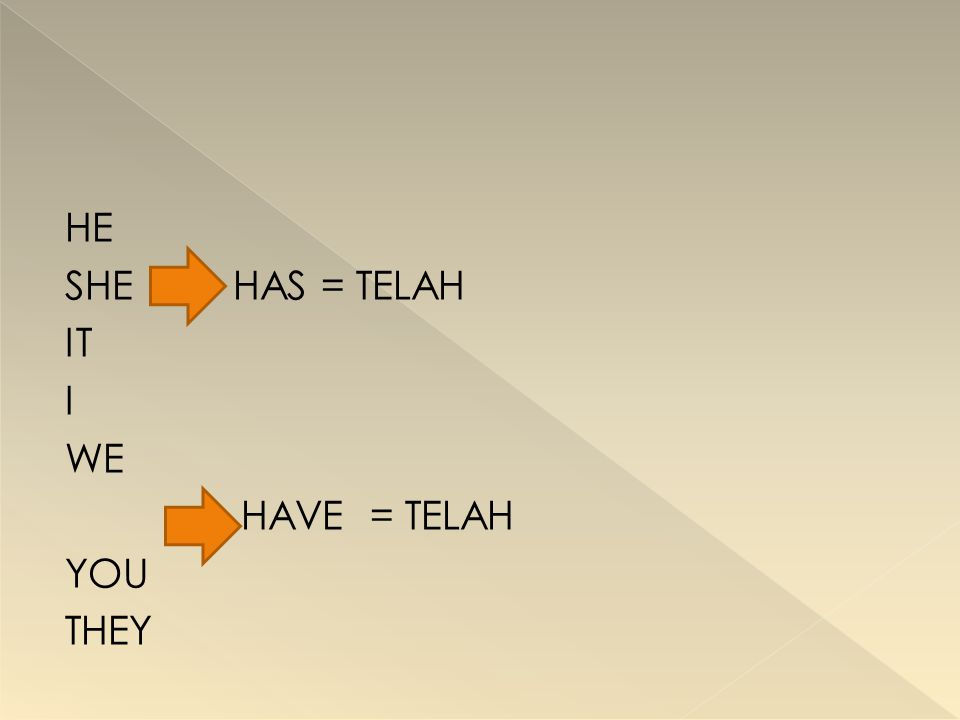 HE SHE HAS = TELAH IT I WE HAVE = TELAH YOU THEY