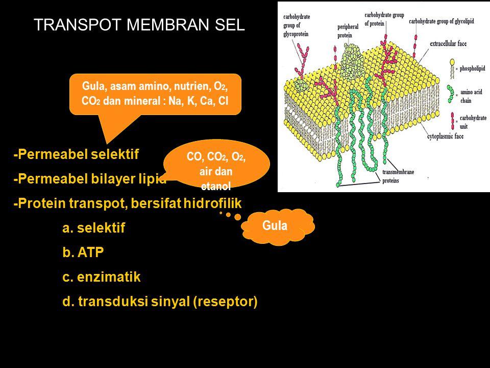 TRANSPOT MEMBRAN SEL -Permeabel selektif -Permeabel bilayer lipid -Protein transpot, bersifat hidrofilik a. selektif b. ATP c. enzimatik d. transduksi