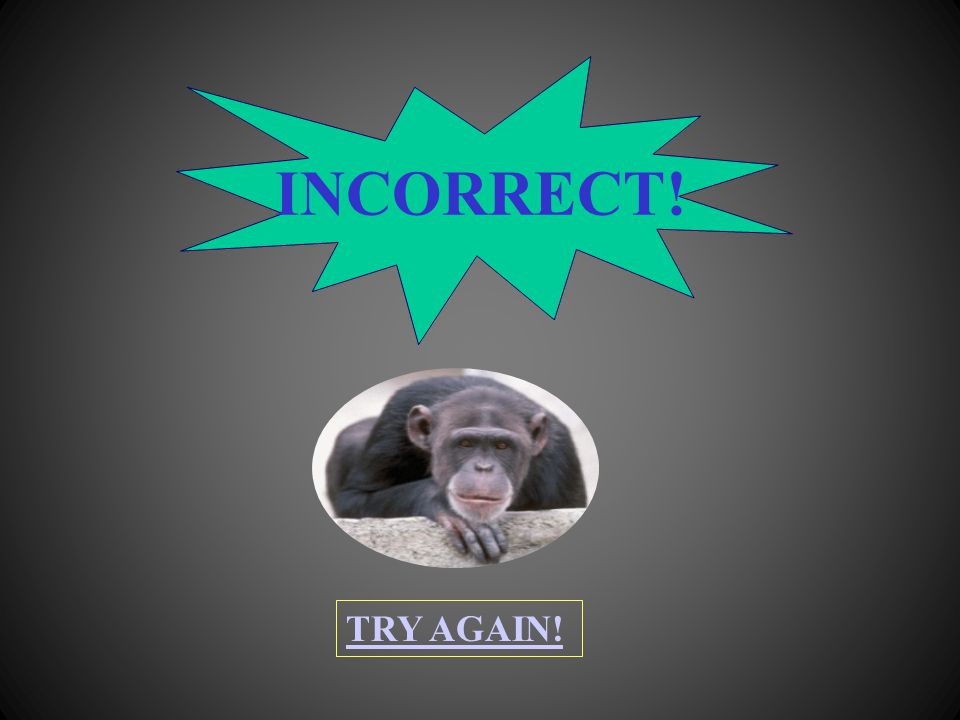 INCORRECT! TRY AGAIN!