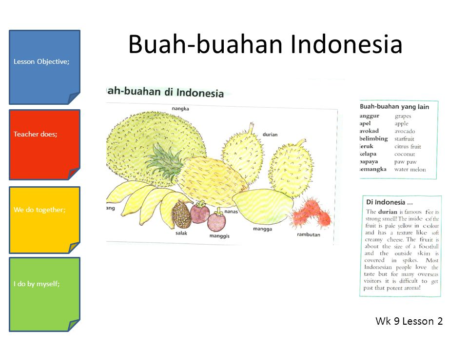 Buah-buahan Indonesia Wk 9 Lesson 2 Lesson Objective; Teacher does; We do together; I do by myself;