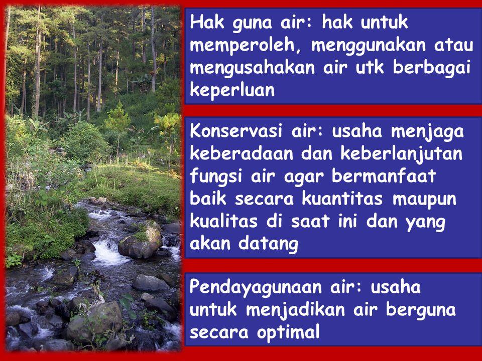 Hak guna air: hak untuk memperoleh, menggunakan atau mengusahakan air utk berbagai keperluan Konservasi air: usaha menjaga keberadaan dan keberlanjuta